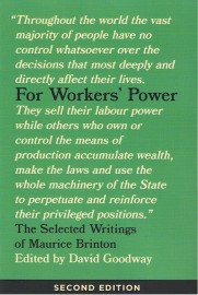 For Workers' Power: The Selected Writings of Maurice Brinton