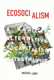 Ecosocialism: A Radical Alternative to Capitalist Catastrophe