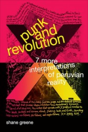 Punk and Revolution Seven More Interpretations of Peruvian Reality